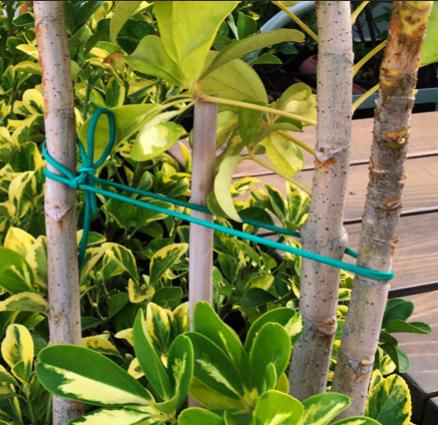 Κορδόνι Δενδροκομίας - ΠΛΑΣΤΙΚΑ ΛΕΟΝΤΑΚΗ - πλαστικά, σχοινιά, νάϋλον,  σκάλες, απλώστρες, κόλλες, σακιά, δίχτυα, συσκευασία