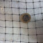 Δίχτυ Πουλιών Ortoamica